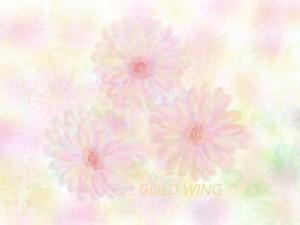羽生結弦 花は咲く