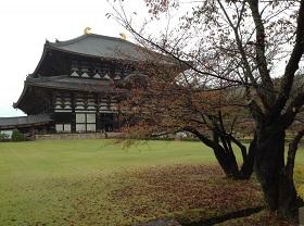 東大寺と紅葉