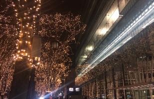 仙台 光のページェント 2016